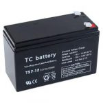 12V_7AH_LEAD_ACID_BATTERY_PALS